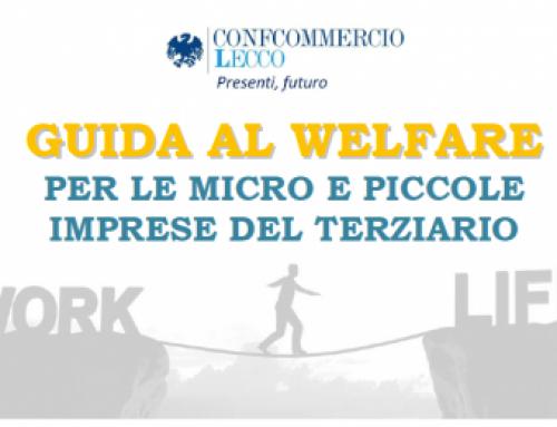 Welfare Model Canvas per le aziende del terziario, nella Guida al Welfare di Confcommercio Lecco